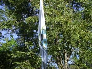 Bandera Inversa